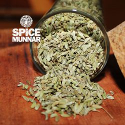 Anise-Seed