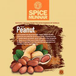 peanut-spicce-munnar