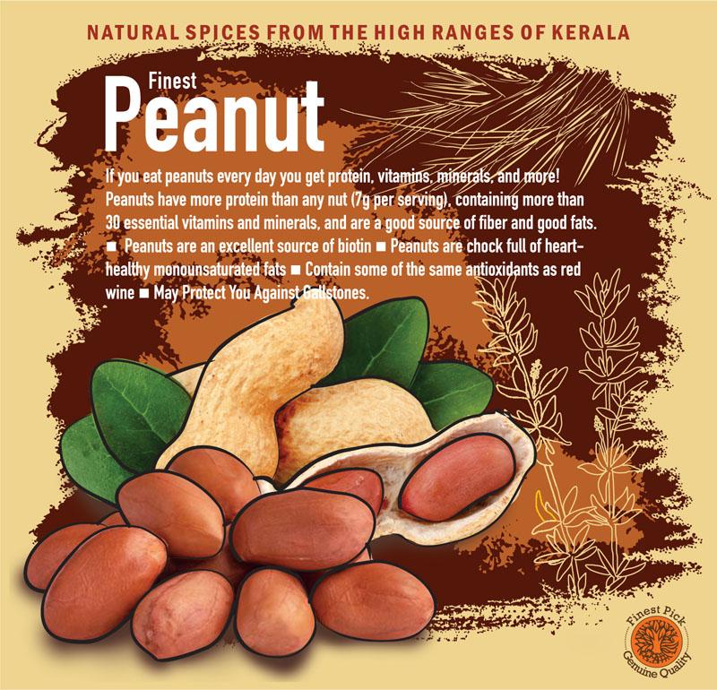 Peanut - KeralaSpices
