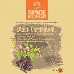 Black cardamom-spice-munnar